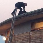 """Bild der Woche: Arche des Waldes """"Dach-Photopoint"""""""