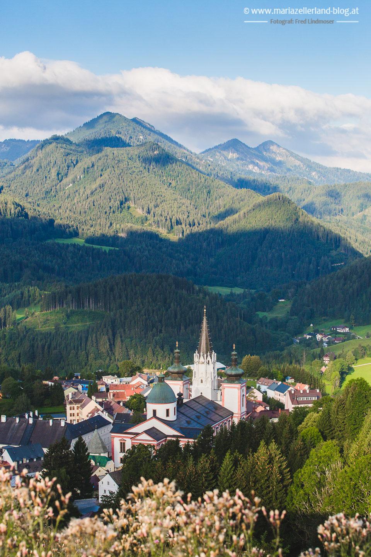Basilika Stehralm Mariazell August 2016-3222