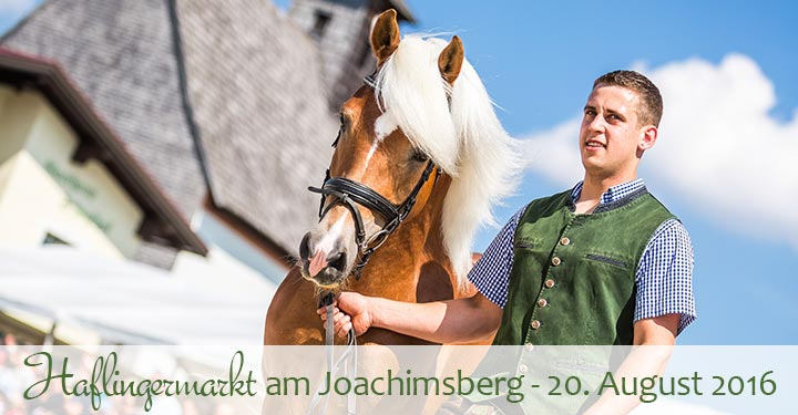 Haflingermarkt-Joachimsberg