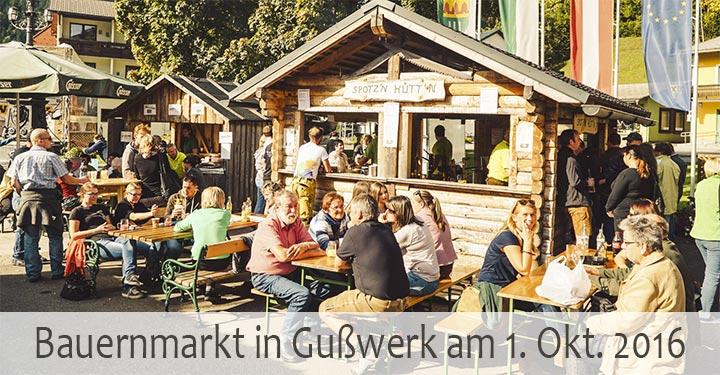 bauernmarkt-gusswerk-2016