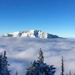 Bild der Woche: Ötscher im Nebelmeer
