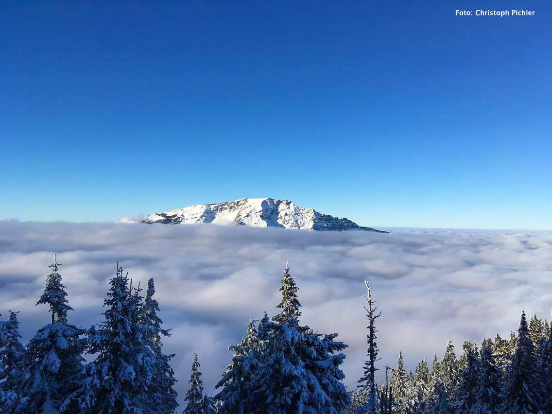 oetscherblick-gemeindealpe-nebelmeer