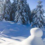 Bild der Woche: Winterlandschaft Mariazellerland