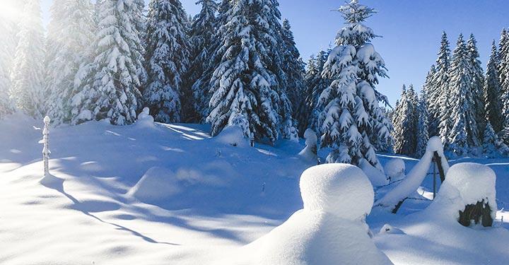 winter-mariazellerland_2706-kopie-2
