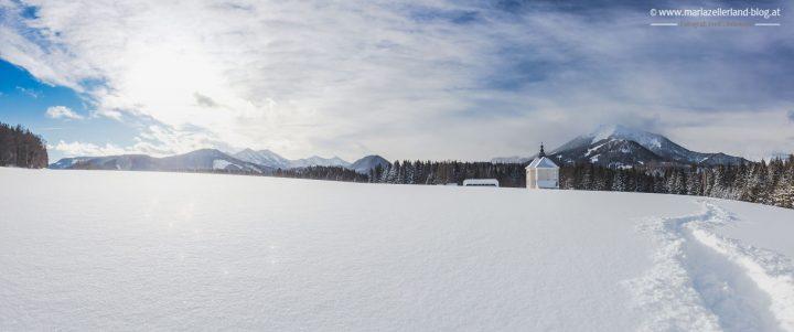 winterlandschaft-mariazell-jan2017