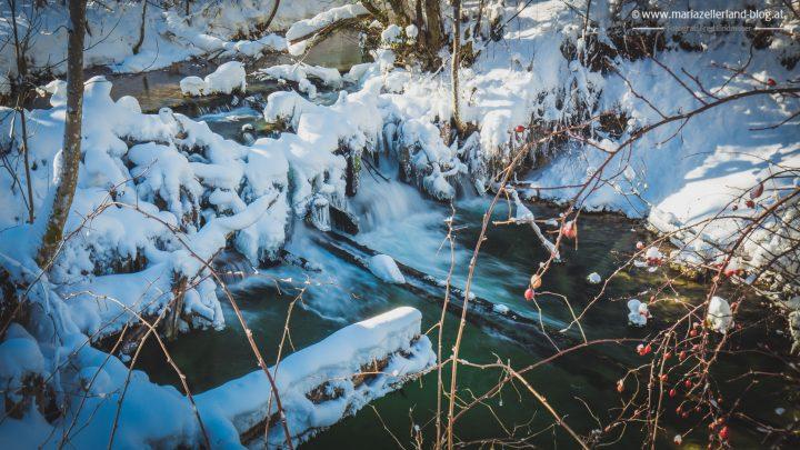 winterlandschaft-mariazell-jan2017-0839