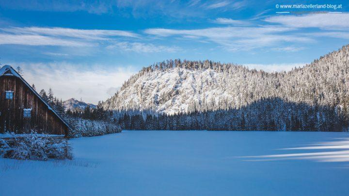 winterlandschaft-mariazell-jan2017-0853