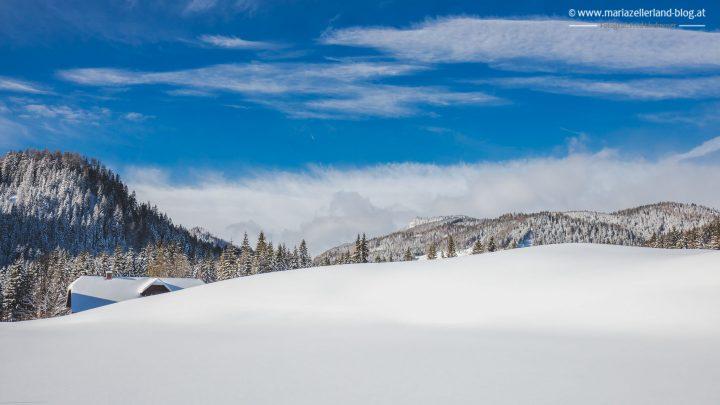 winterlandschaft-mariazell-jan2017-0856