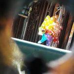 Bild der Woche: Farblichtblicke