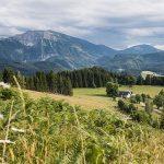 Naturparkkonzept Naturpark Ötscher-Tormäuer Auftakt