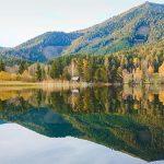 Bild der Woche: Herbstspiegelung Erlaufsee