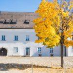 Bild der Woche: Herbst am St.-Lambrecht-Platz