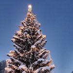 Bild der Woche: Dorfchristbaum im Salzatal