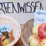 Aktionstag Hochlagenobst 2018 im Naturparkzentrum Ötscher-Basis