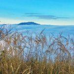 Bild der Woche: Sauwand - Blick über Nebelmeer