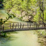 Frühlingsfotos aus dem Klausgraben - Salzawanderung