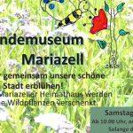 """""""Blühende und summende Steiermark""""- Naturkundemuseum Mariazell"""