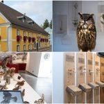 Eröffnung des neuen Naturkundemuseums Mariazell am 26. Oktober