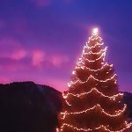 Bild der Woche: Weihnachtsstimmung im Salzatal