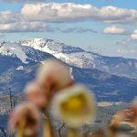 Bild der Woche: Gemeindealpe-Ötscher