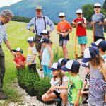 Baumpflanzaktion auf der Mariazeller Bürgeralpe