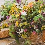 Kräuterbüscherl binden - Kräutersegnung - Maria Himmelfahrt | Brauchtumsstammtisch