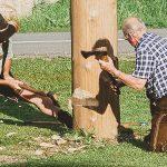 Maibaumumschneiden beim Franzbauer im Salzatal