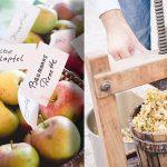 Neues zum Obst-Herbst im Naturpark Ötscher-Tormäuer - Hochlagenobst