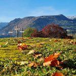 Bild der Woche: Kalvarienberg Herbststimmung