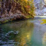 Klausgraben - Herbstwanderung entlang der Salza