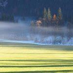 Bild der Woche: Frostgrenze