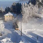 Mariazellerbahn: Ötscherbär, Panoramawagen und Dampfzug heuer nicht mehr unterwegs
