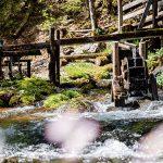 "Ausflugs-und Wandertipp: Erlebniswelt Mendlingtal ""Auf dem Holzweg"""