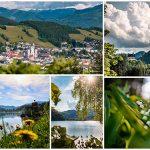 Fotos aus dem Mariazellerland | Juni 2021