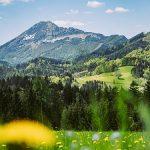 Bild der Woche: Ötscher-Anblick vom Joachimsberg